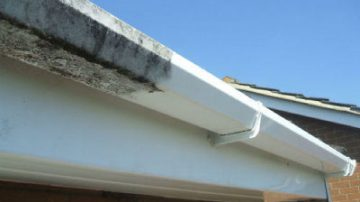 Gutter & Fascia Cleaning